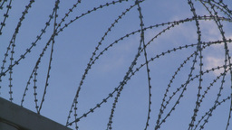 HD 2008 10 9 4 military razor wire Stock Video Footage