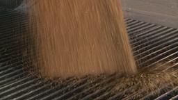 HD2008-9-3-51 grain truck unloading Footage