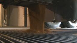 HD2008-9-3-59 grain truck unloading Stock Video Footage