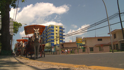 HD2009-4-7-35 Cuba bus and horse Stock Video Footage