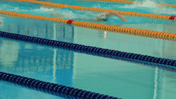 Sports competition swimming in the pool Footage
