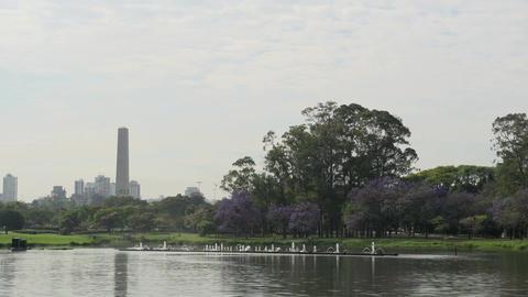 003 Sao Paulo , Ibirapuera park , waterfountain Stock Video Footage