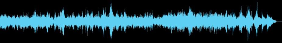 Chopin Piano Prelude No. 24 In D Minor Op. 28