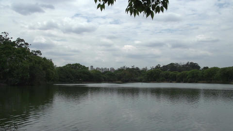 025 Sao Paulo , Ibirapuera park , pond , skyline , Stock Video Footage
