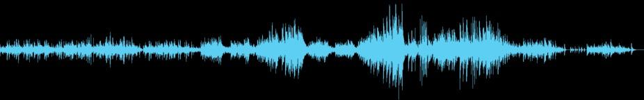Chopin Piano Prelude No. 15 in D-flat major, Op. 28 (4:33) Music