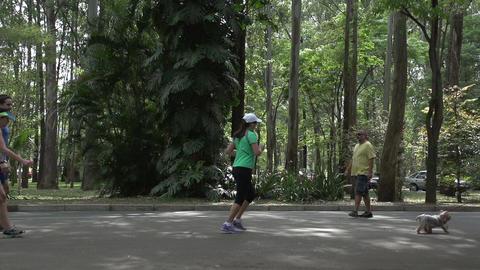 056 Sao Paulo , Ibirapuera park , slowmotion sexy  Footage
