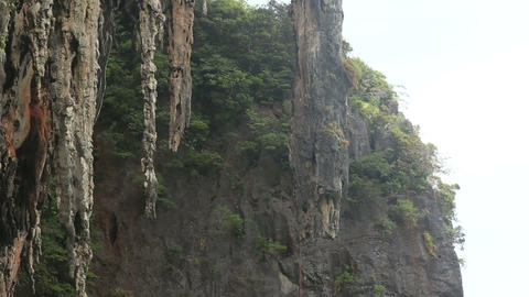 cliffs with caves and trees Stock Video Footage