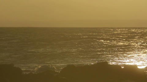 Surfing at the dusk Stock Video Footage