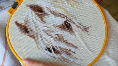 Needlework Footage
