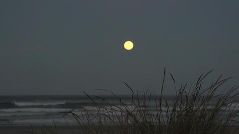 005 Laguna , sunset at sea , full moon Footage