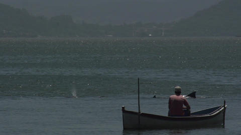 0129 Laguna , fisherman in boat , dolphins out of  Footage