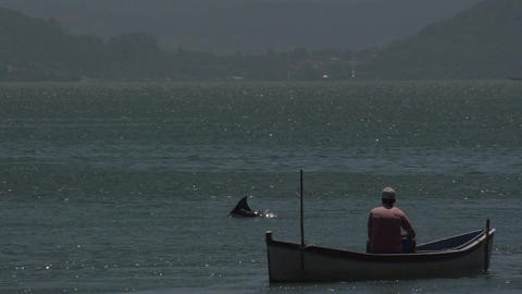 0130 Laguna , fisherman in boat , dolphins out of  Footage