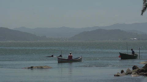 0131 Laguna , fishermen in boat , dolphins out of Stock Video Footage
