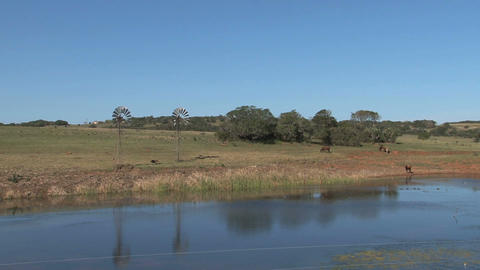 Lake In South Africa, old windmills Stock Video Footage