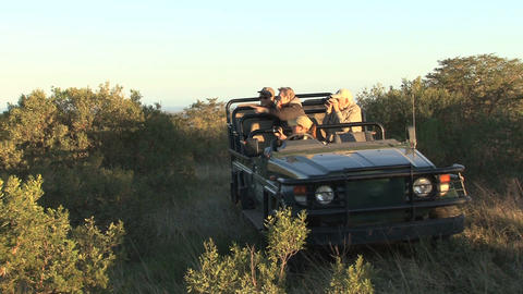 Lions spotting from 4wd car Stock Video Footage