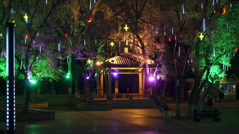 Heihe City Heilongjiang Park Night View 02 Stock Video Footage