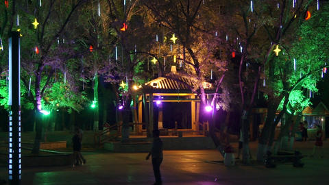 Heihe City Heilongjiang Park Night View 02 Footage
