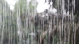 The Rain In The Tropics stock footage