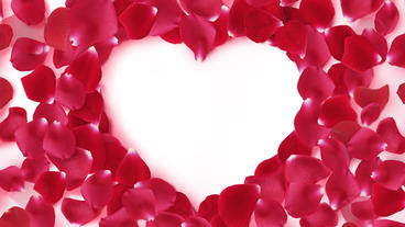 Rose Heart stock footage