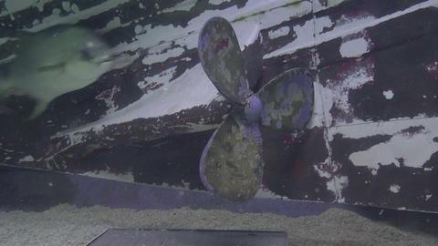 old profeller aquarium design Stock Video Footage
