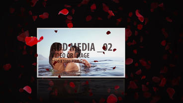 Romantic Roses with Media Display After Effects Template