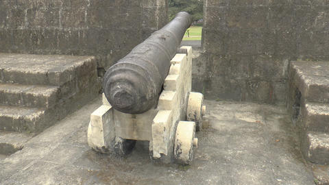 vintage cannon view from the back Footage