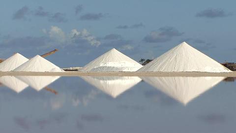 Salt flats , Bonaire Footage