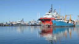 Boats Docked at Fremantle Fishing Boat Harbour Footage