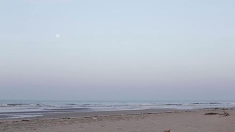 moon hangs over the sea near the sandy beach Footage