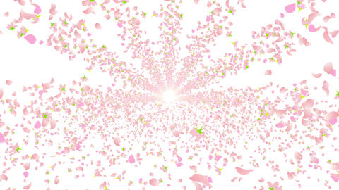 cherry blossom tunnel A 9 4k Animation
