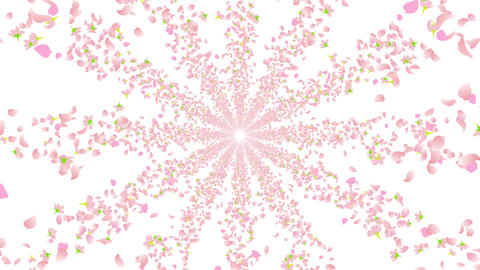 cherry blossom tunnel BE 2 4k Animation