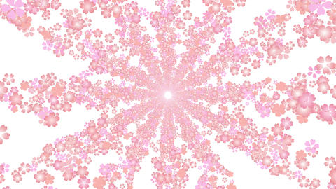 cherry blossom tunnel BE 1 4k Animation