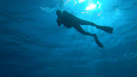 Diver In Sunlight From Below Stock Video Footage