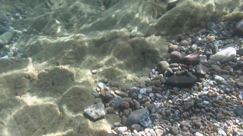 Underwater Bottom Stones stock footage