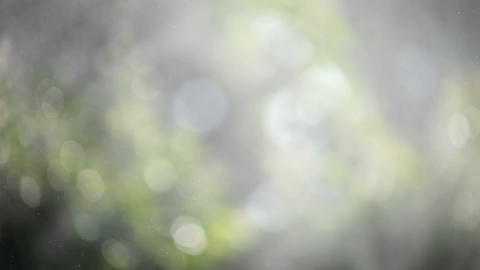 water vapor in a garden Footage