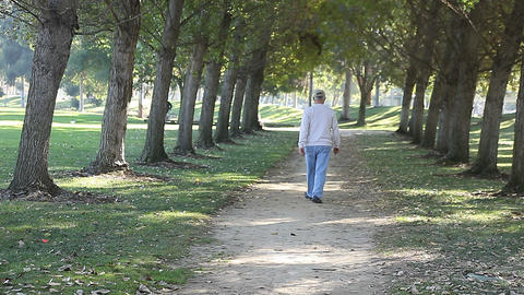Man On A Tree Lined Path stock footage