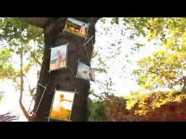 One Summer Day stock footage