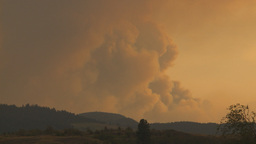 HD2009-8-1-14 forest fire smoke Stock Video Footage