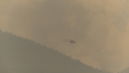 HD2009-8-1b-7 forest fire Erickson S64 helicopter Stock Video Footage