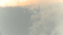 HD2009-8-1b-11 forest fire from across lake Footage