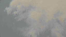 HD2009-8-1b-19 forest fire from across lake TL Stock Video Footage