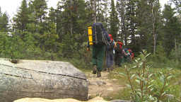 HD2009-8-6-3 hikers in forest Footage
