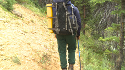 HD2009-8-6-5 hikers in forest w river Footage