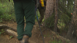 HD2009-8-6-5 hikers in forest w river Stock Video Footage