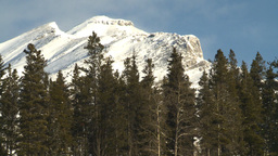 HD2009-1-1-49 Banff snow mtn forest Stock Video Footage