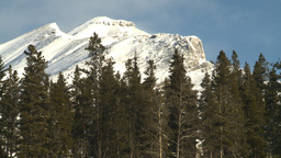 HD2009-1-1-49 Banff snow mtn forest Footage