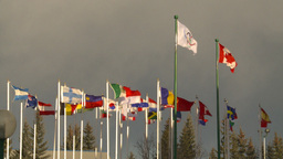 HD2009-1-5-23 many flags oly Stock Video Footage