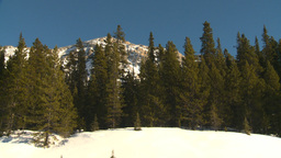 HD2009-1-7-17 snow mtn forest Stock Video Footage