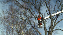 HD2009-1-9-21 arborist handsaw bucket lift cut Footage