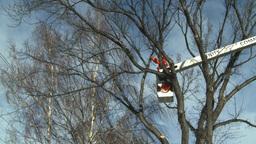 HD2009-1-9-21 arborist handsaw bucket lift cut Stock Video Footage